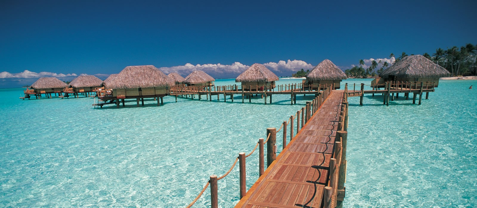 bora bora pearl beach resort bora bora honeymoon With bora bora honeymoon packages