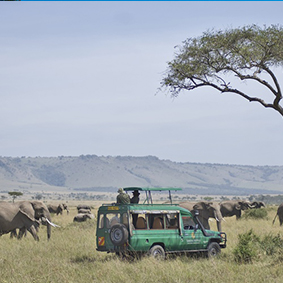 Mara Serena Lodge - Kenya Safari Honeymoon - Thumbnail