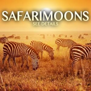 safarimoons