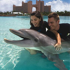 Atlantis Dolphin Encounter at Dolphin Bay - Dubai Excursions - Thumbnail
