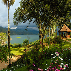 Ceylon Tea Trails - Sri Lanka Honeymoon Packages - thumbnail