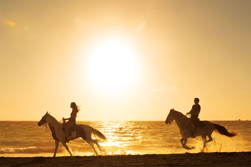 riveria maya blog - romantic horseback riding